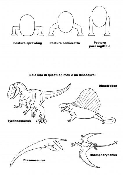 Solo uno di questi è un Dinosauro