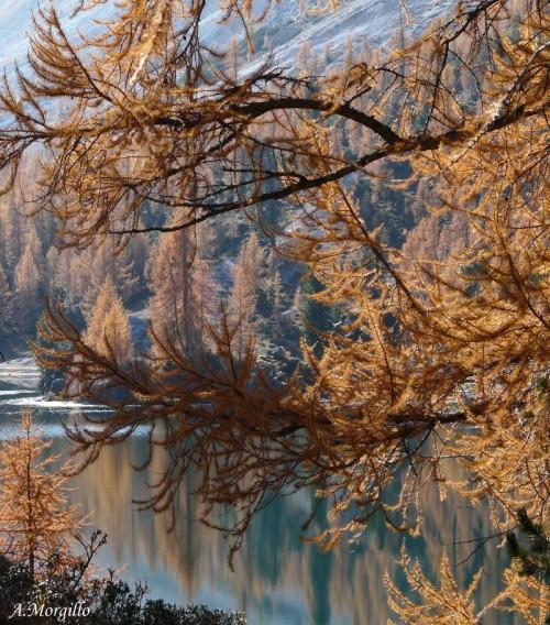 A.Morgillo_lago Federa, nelle dolomiti bellunesi (Cortina d'Ampezzo)