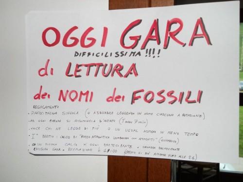 Gara di Lettura (difficilissima) dei nomi dei fossili!