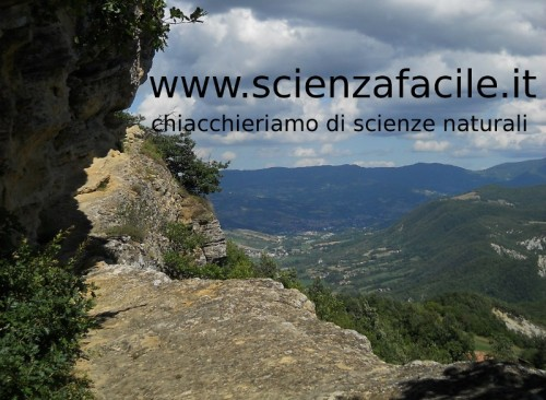 il canale di scienzafacile su youtube