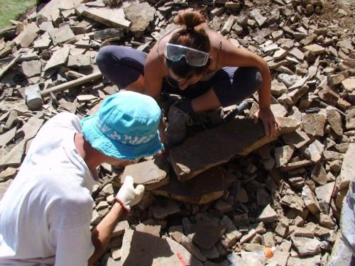 Ricomposizione di una lastra contenente un fossile - Scavo Grigna Settentrionale 2009