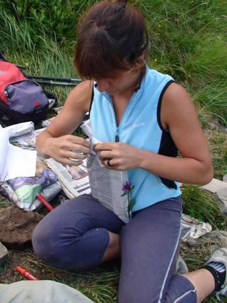 Imballaggio dei fossili