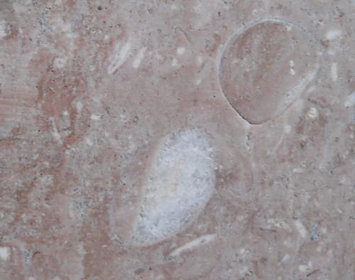 strutture bio-geopetali-3