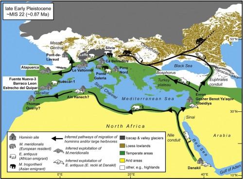 possibile scenario paleobiogeografico intorno allo stage isotopico MIS22