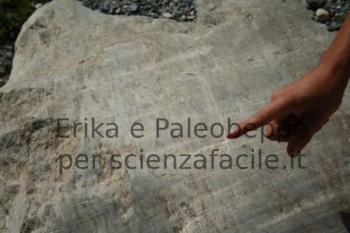 Le mani di Paleobeppe indicano la direzione del flusso glaciale sui solchi provocati dall'esarazione ad opera di ciotoli e massi trascinati al fondo