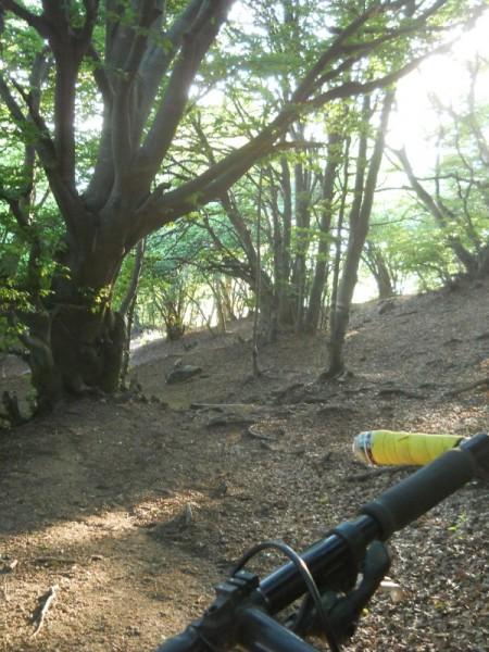 La mia Stumpjumper sui sentieri del Monte Generoso
