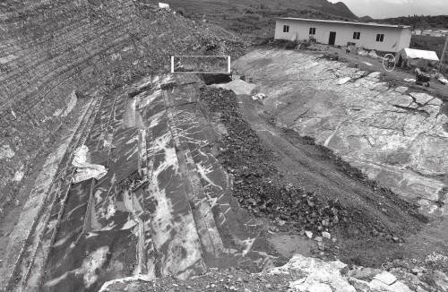 L'enorme sito di scavo cinese da cui provengono gli esemplari in studio