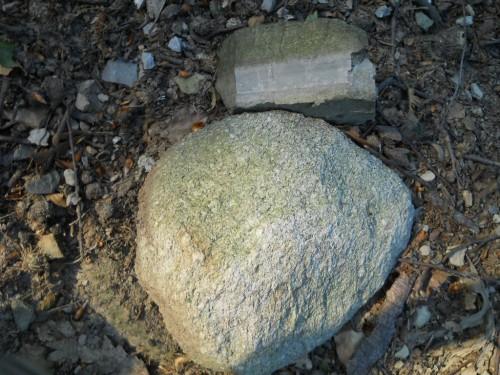 Differenza tra la roccia tipica del Monte Generoso (calcare di Moltrasio) e un piccolo masso di granito proveniente dalle Alpi Centrali