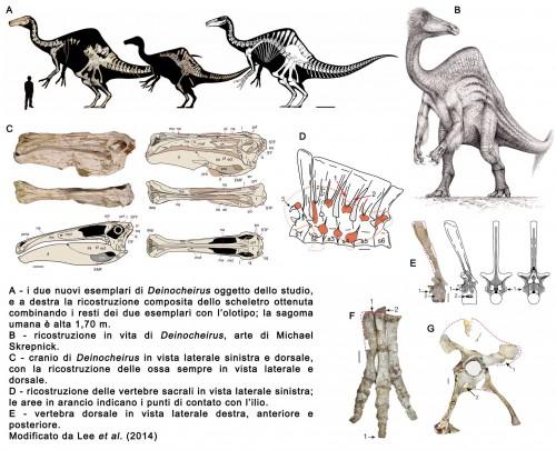 Novità riguardo i Dinosauri 2